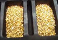 Guldgranuler för exakt vikt på guldtackor.